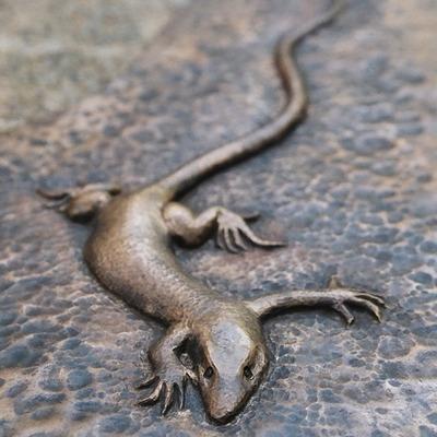 20121101200400-heather_mclarty_lizard