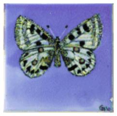 Butterfy Tile, Pamela Gerrie