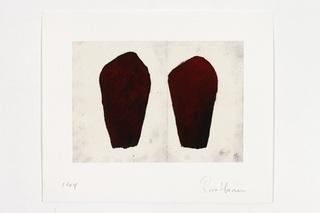 Untitled (Hamilton), Roni Horn