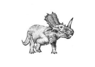Triceratops,