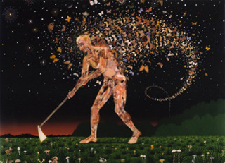 Field Guides, Fred Tomaselli