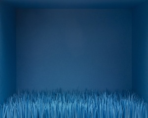 Blue Grass, Amy M. Ho