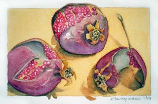 Pomegranates, Kathleen Swaydan