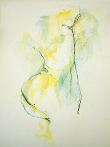 20121127221603-lemon_and_lime