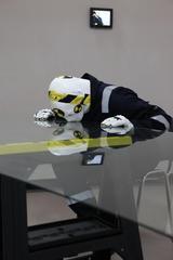 Crash Test Dummy, Tom Estes