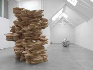 Installation View, Tony Cragg