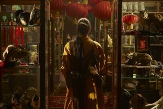 Disorient, Fiona Tan