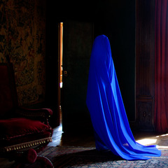 Allegory of blue II , GULER ATES