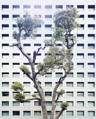 Bildlegende Collection # 1-001, OTA - TOKYO-JAPAN, Sébastien Secchi