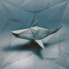 Oragami Shark,Marc Fichou