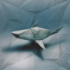 Oragami Shark, Marc Fichou