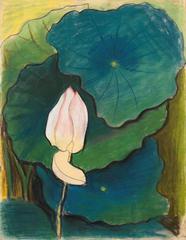 Water Lily, Joseph Stella