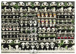 Panda, Liu Bolin