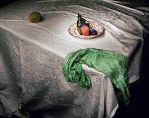 Lorikeet with Green Cloth, Marian Drew