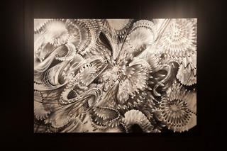 Untitled, Douglas Hoekzema