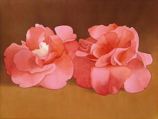 Two Pink Camellias,Mark Adams