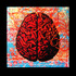 20121217051827-brain1-1