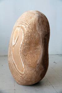 20121219204453-knuckle_bone