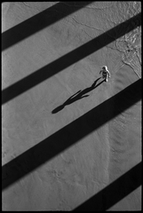Baby Walks Shadow, Ed Templeton