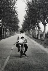 Provence France, Elliott Erwitt