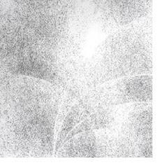 Hydrangea 16, Jessica Curtaz