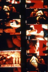 from Fuses, Carolee Schneemann