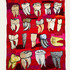 20121230161124-tooth_sampler
