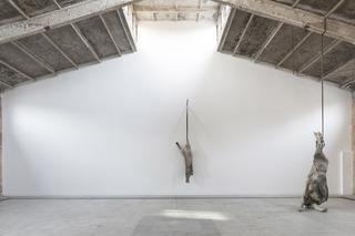 Installation View, Berlinde De Bruyckere