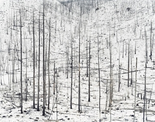 Burn #2, David Nadel