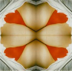 Valentine, Genesis BREYER P. ORRIDGE