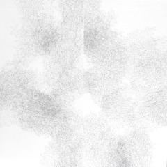 Hydrangea 10, Jessica Curtaz