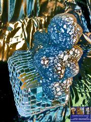 Blue Sphinx, Manuella Muerner Marioni