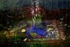 20130112001711-astrba_nyima_535-012_72dpi_2