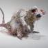 20130113211437-rat_1__d_