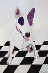 20130114005813-french_bulldog