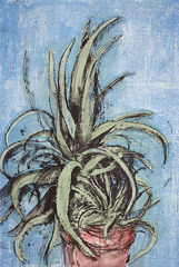 New Mexican Aloe,Jim Dine
