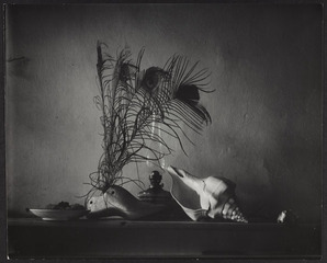 Still life after Caravaggio, variation I, Josef Sudek