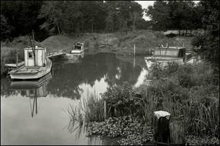 Contraband Bayou, Louisiana, Edward Weston