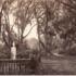 20130121052825-barnard-savannah