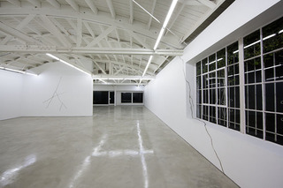 Lines and Cracks and Zebras and Horses Installation View ,Michael Genovese
