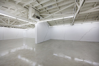 Lines and Cracks and Zebras and Horses installation view,Michael Genovese