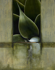 Ming Jade, Andrea Raft