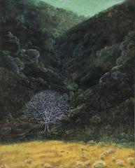 Buckeye, Helen Stanley