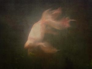 20130125111805-fish_in_my_sotmach