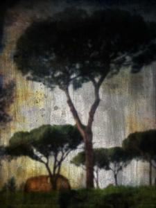 20130125111905-among_trees
