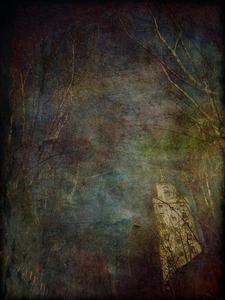 20130125113133-urban_trees_16