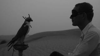 The Eye of Dubai, Christian Jankowski