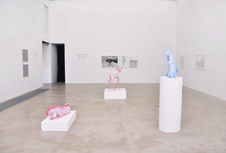 Installation view,