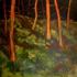 Clearinginthewoods