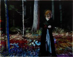 The Masquerader  , Penny Rakoff